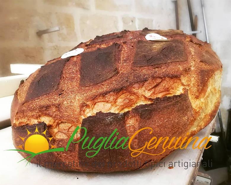Pane di Altamura dop 5kg