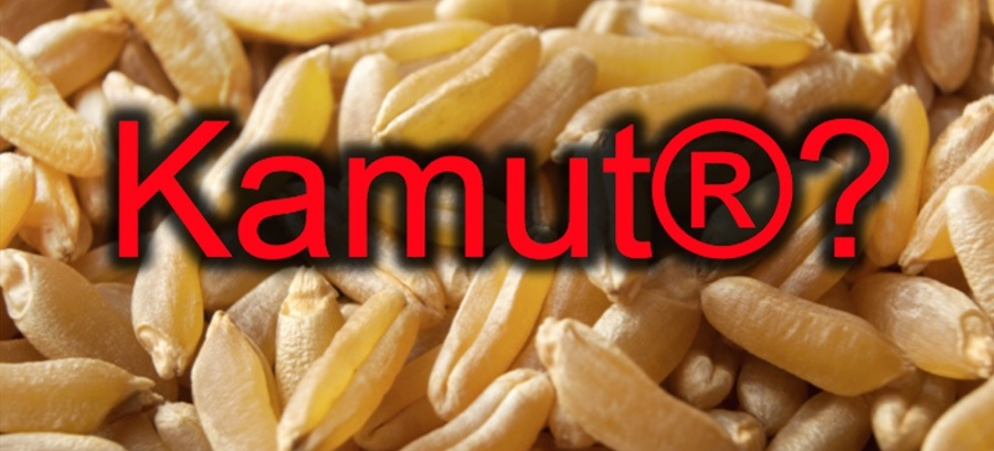 Kamut? Il grande inganno del marketing agroalimentare